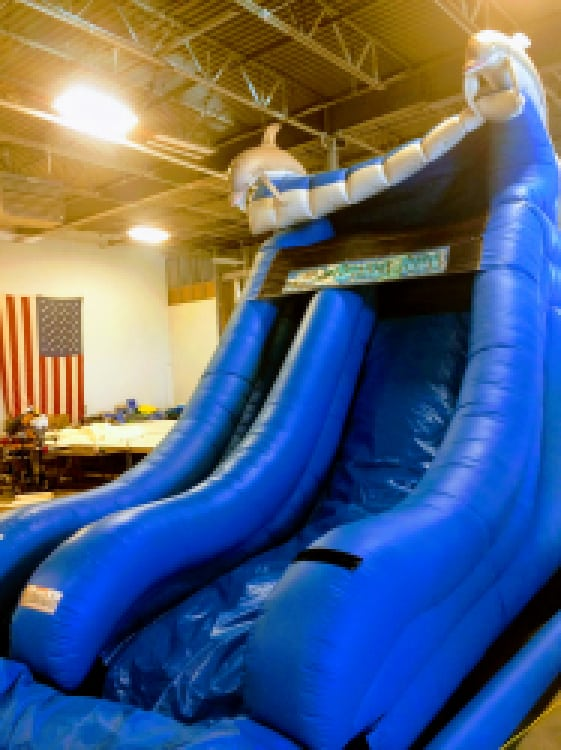 19ft Waterslide With Pool Dolphin Themed Rental